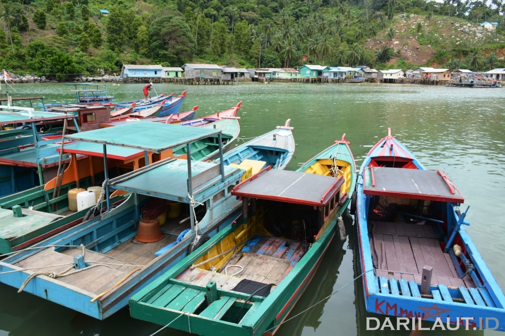 Armada tangkap nelayan di Anambas, Provinsi Kepulauan Riau . FOTO: DFW-INDONESIA