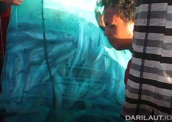 Nelayan dan hasil tangkapan ikan. FOTO: DOK. DARILAUT.ID