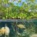 FOTO: VILAINECREVETTE/SHUTTERSTOCK.COM/UNESCO.ORG