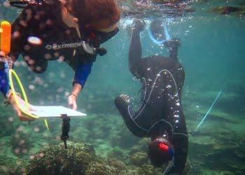 Kegiatan lapangan peserta EMBRIO international summer school FPIK-IPB di lokasi terumbu karang Wakatobi, Sulawesi Tenggara, Minggu (19/8). FOTO: DOK. ISTIMEWA