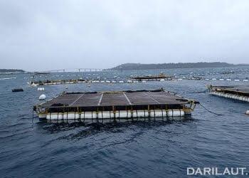 Karamba jaring apung untuk budidaya tuna di Jepang. FOTO: DONNA OCTAVIANA