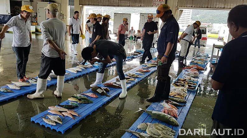 Proses lelang ikan di FCA Nago, Okinawa Jepang. Peserta lelang atau pembeli ikan hanya Middle Man yang mengenakan topi kuning. FOTO: DONNA OCTAVIANA