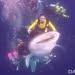 Penyelam menunggangi hiu paus. FOTO: DOK. ISTIMEWA