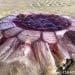 Mahluk laut yang ditemukan di sekitar pantai Selandia Baru. FOTO: EVA DICKINSON/SCIENCE ALERT