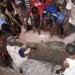 Warga  pulau Buano, Kabupaten Seram Barat, Maluku beramai ramai menguburkan Dugong yang mati terdampar ( Foto : Facebook Whale Stranding Indonesia)