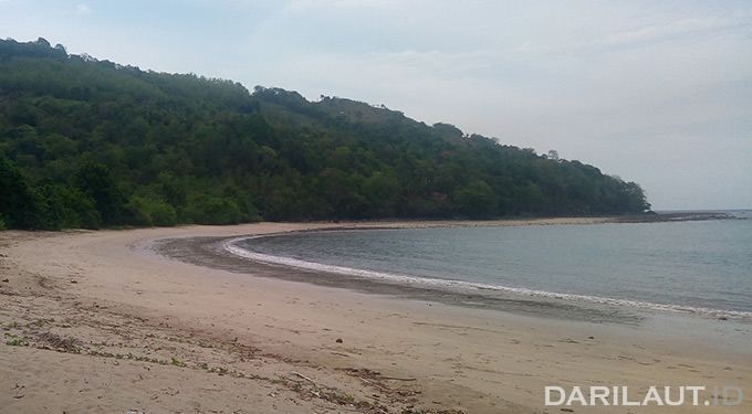 Iliustrasi air laut surut: FOTO: DARILAUT.ID