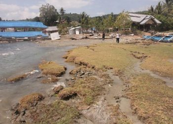 Tsunami Teluk Palu