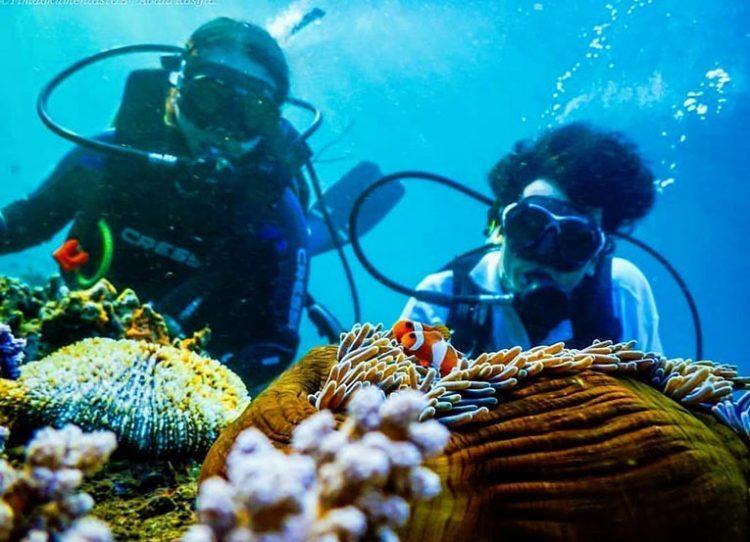 Wisata bawah laut di Bangsring