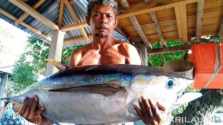 Ikan tuna sirip kuning