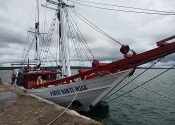 KLM Pinisi Pusaka Indonesia sandar di Saumlaki.