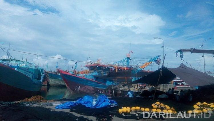 Kapal ikan di Pelabuhan Benoa. FOTO: DARILAUT.ID