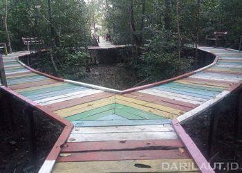 Jembatan Cinta, tracking mangrove di Pulau Sebatik, perbatasan Indonesia dan Malaysia. FOTO: DARILAUT.ID