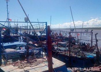Ilustrasi kapal ikan di Pelabuhan Merauke. FOTO: DARILAUT.ID