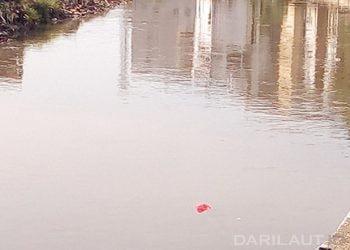 Sampah plastik di sungai. FOTO: DARILAUT.ID