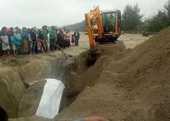 Pengukuran hiu paus yang mati di Pesisir Selatan. FOTO: KKP