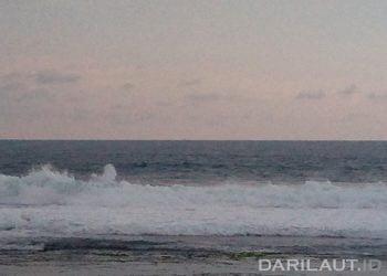Ombak dan arus di Pantai Selatan Jawa. FOTO: DARILAUT.ID