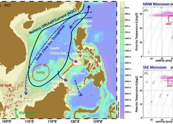Skema peta hidrodinamika (kiri) dan karakteristik massa air laut (kanan) di Natuna dan Laut Cina Selatan oleh Widodo dkk (2019).