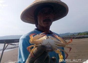 Nelayan penangkap rajungan di Teluk Penyu, Cilacap, Jawa Tengah. FOTO: DARILAUT.ID