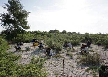 Kegiatan penanaman cemara laut di Taman Nasional Taka Bonerate. FOTO: KSDAE/KLHK