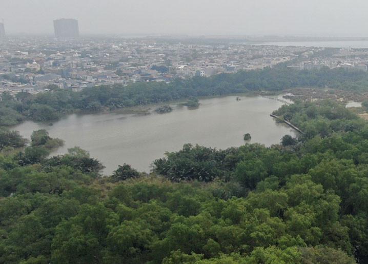 Pusat Edukasi Lingkungan dan Restorasi Mangrove Mulai Dibangun di Muara Angke