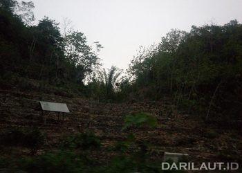 Lahan pertanian di Kabupaten Gunungkidul, Provinsi Daerah Istimewa Yogyakarta.  Dampak positif La Nina bagi para petani di wilayah yang selalu kering dan kekurangan air bisa melakukan pemanenan air. FOTO: DARILAUT.ID
