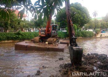 Daerah Aliran Sungai (DAS) Ciliwung. FOTO: DARILAUT.ID