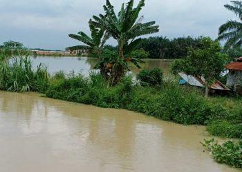 Banjir melanda 5 kecamatan di Kabupaten Serdang Bedagai, Sumatera Utara. FOTO: BPBD Serdang Bedagai/BNPB