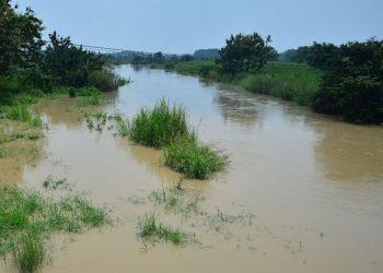 Banjir di Gresik, Jawa Timur, merendam 9 desa di Kecamatan Cerme karena luapan Kali Lamong. FOTO: BPBD Kabupaten Gresik/BNPB