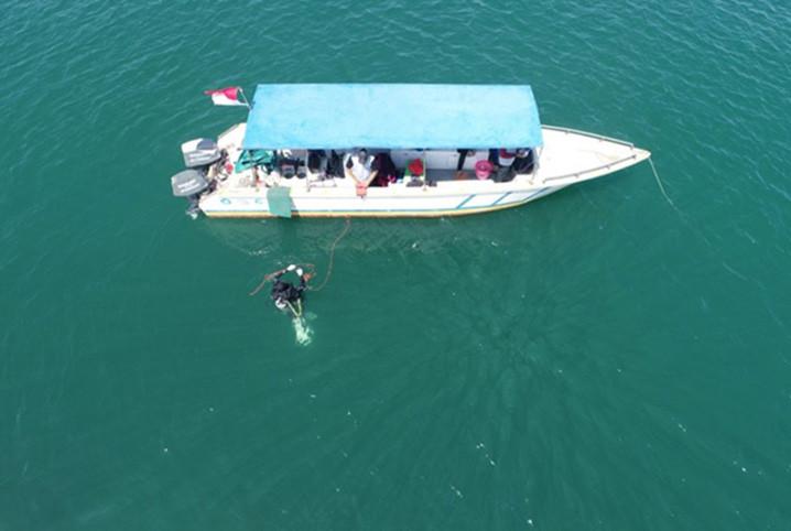 Monitoring kesehatan karang atau Reef Health Monitoring 2021 di perairan Batam, Kepulauan Riau. FOTO: OSEANOGRAFI.LIPI.GO.ID