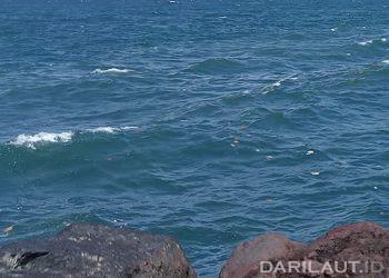 Ilustrasi pantai dan laut. FOTO: DARILAUT.ID