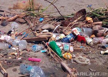 Sampah plastik di pantai. FOTO: DARILAUT.ID