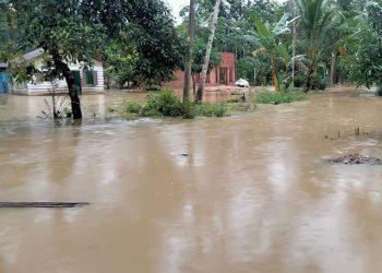 Kondisi banjir di Desa Jambo Rombong, Kecamatan Bandar Pusaka, Kabupaten Aceh Tamiang, Aceh, Minggu (11/7). FOTO: BPBD Kabupaten Aceh Tamiang/BNPB
