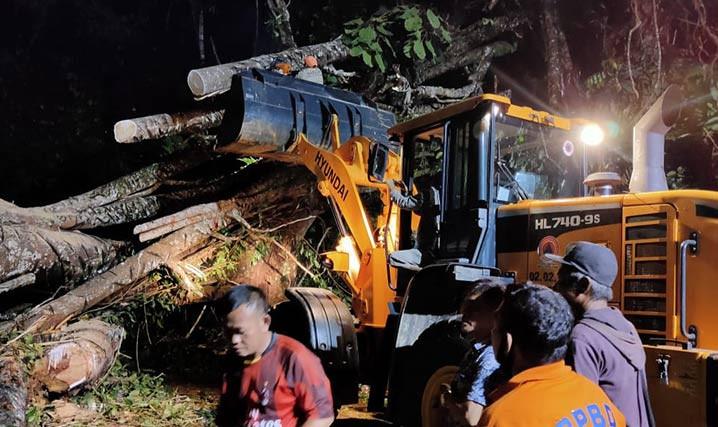 Petugas mengerahkan alat berat untuk membantu proses pengangkatan pohon yang tumbang akibat tertiup angin kencang di Kabupaten Kepahiang, Bengkulu, Minggu (11/7). FOTO: BPBD Kepahiang/BNPB