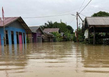 Banjir di Kecamatan Satui, Kabupaten Tanah Bumbu, Provinsi Kalimantan Selatan, pada Sabtu (14/8). FOTO: BPBD Kabupaten Tanah Bumbu/BNPB