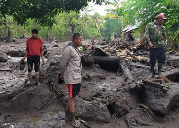 Pencarian warga hilang oleh tim gabungan pascabanjir bandang yang terjadi di Desa Inerie, Kecamatan Inerie, Kabupaten Ngada, Provinsi Nusa Tenggara Timur, Sabtu (4/9). FOTO: BPBD Kabupaten Ngada/BNPB
