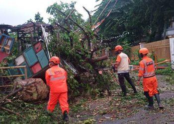 Hujan disertai angin kencang di Kota Malang Jawa Timur, Senin (25/10). FOTO: BPBD Kota Malang/BNPB